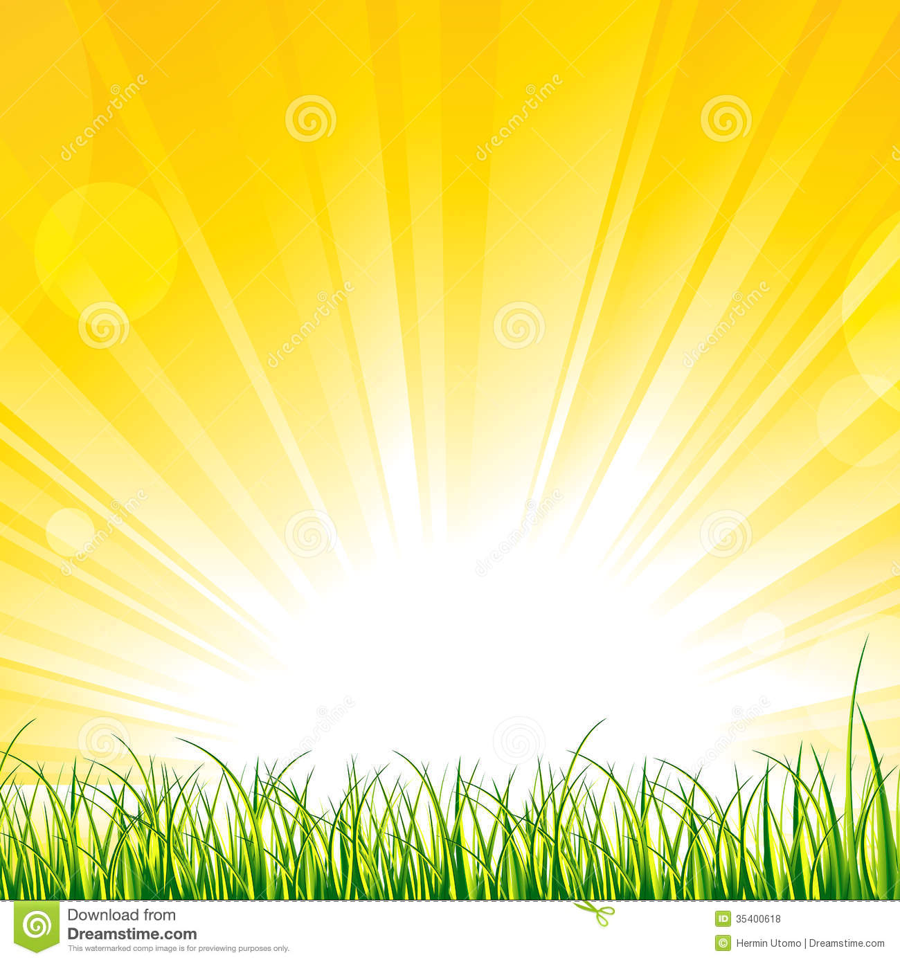 Grass On The Sunshine Rays Royalty Free Stock Photos - Image: 35400618