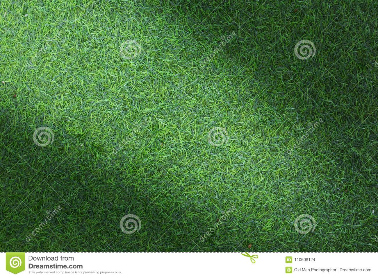 Grass texture or grass background. Green grass for golf course, soccer field or sports background concept design.