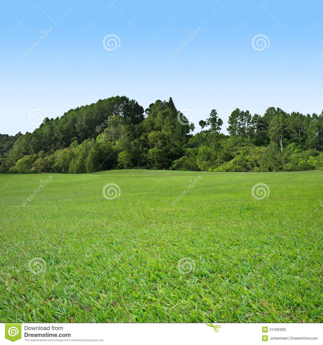 Grass And Tree On Blue Sky Royalty Free Stock Images ...