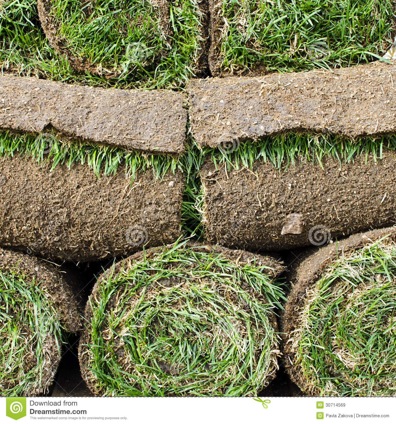 Landscaping Grass Roll : Grass turf royalty free stock images image