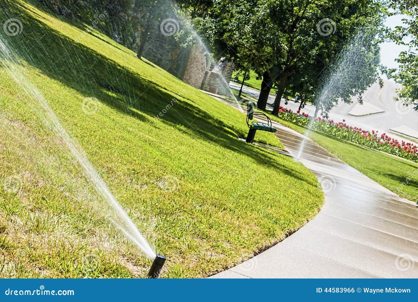 Grass Watering Stock Photo Image 44583966