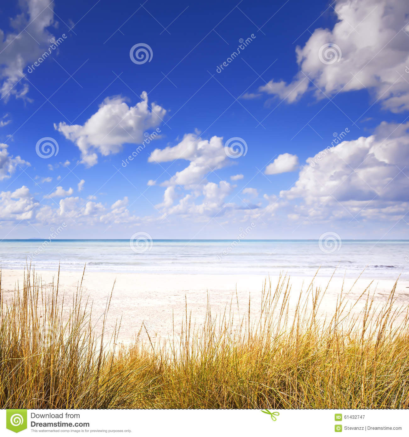 Download Grass On A White Sand Dunes Beach, Ocean And Blue Sky Stock Image - Image of blue, dune: 61432747