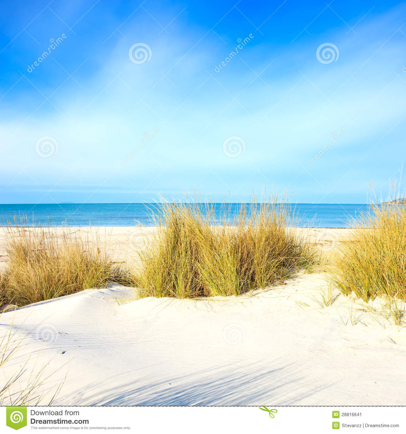 Wood Floor On Beach Sea And Blue Sky For Background Stock: Grass On A White Sand Dunes Beach, Ocean And Sky Stock
