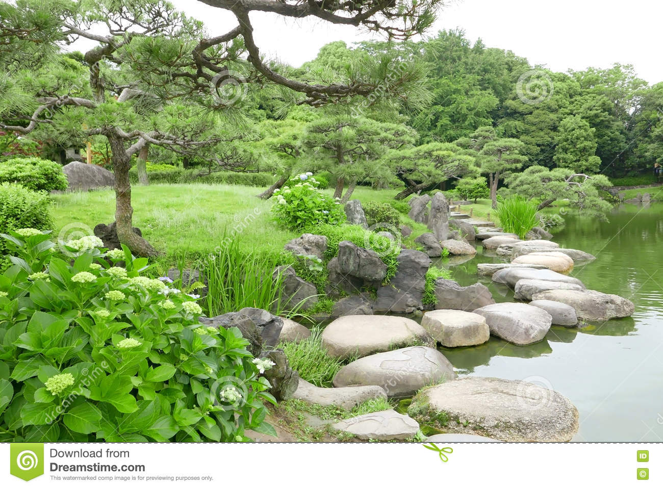 Grasses stone bridge and water pond in japanese zen for Water in japanese