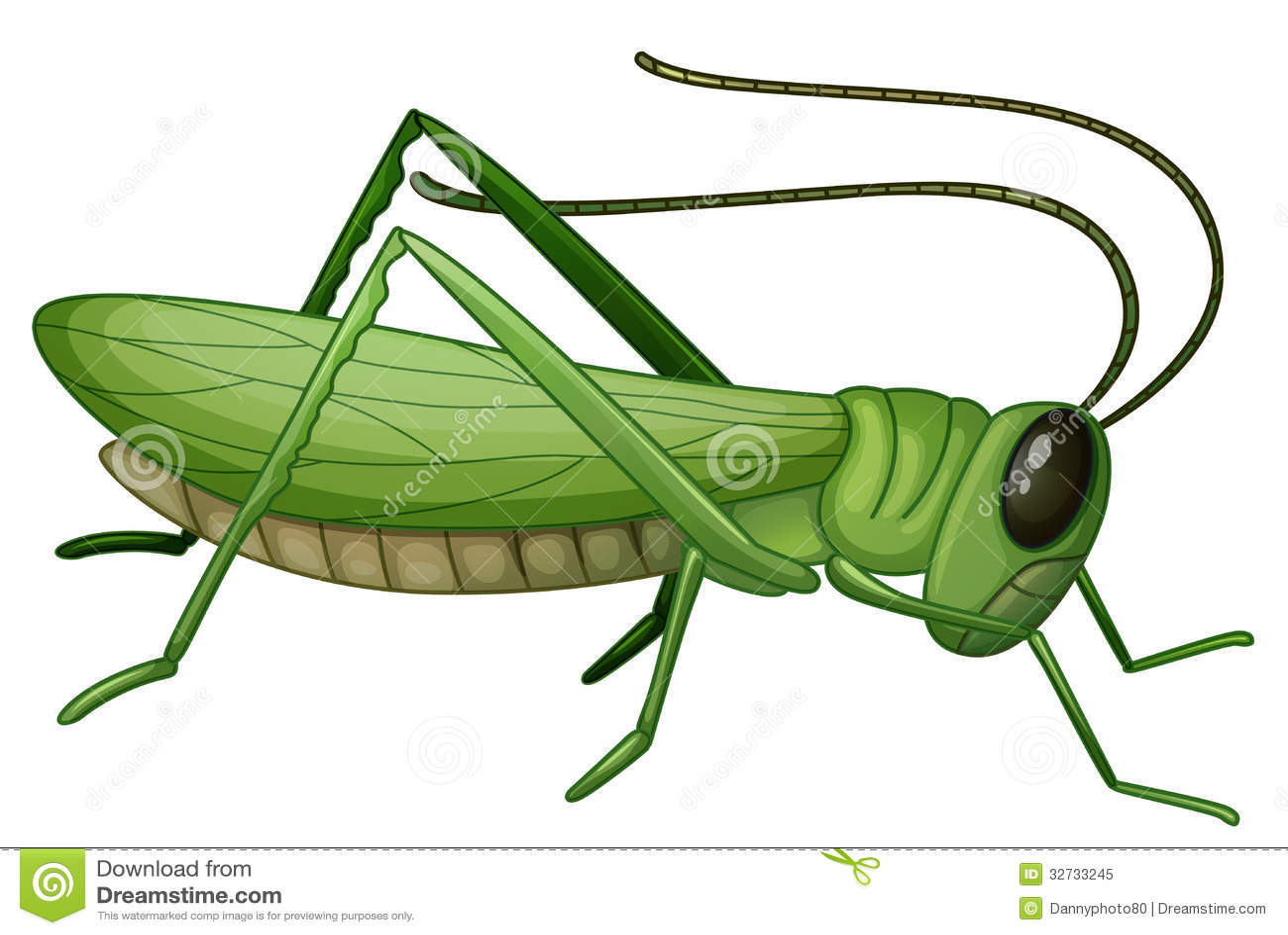 Grasshopper Royalty Free Stock Photo - Image: 32733245