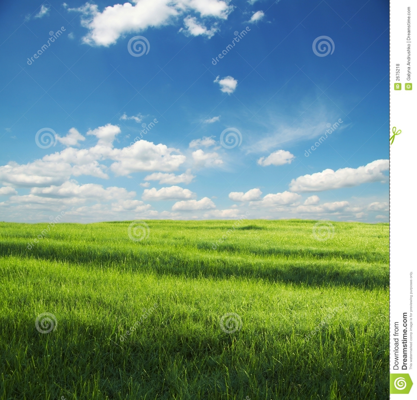 Grassland stock photo image of environment clean blowball 2675218 voltagebd Choice Image