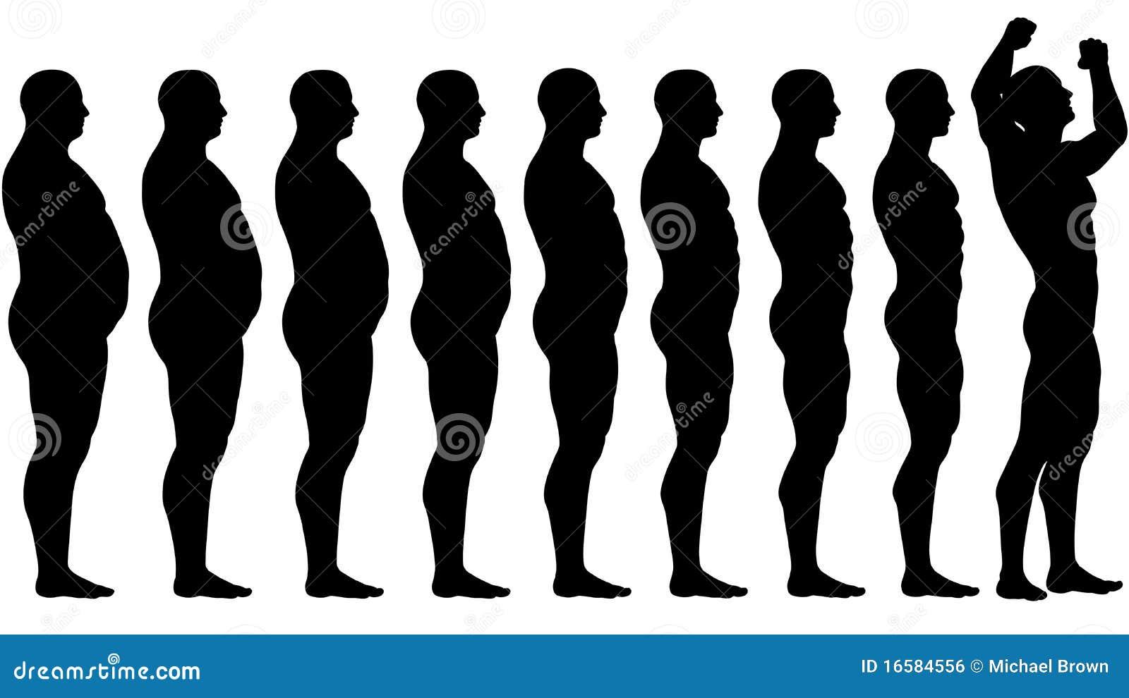 Minerali di carboidrati di grassi di proteine nel nostro cibo