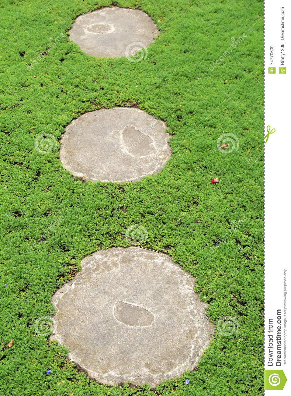 Download Grassy Area With Three Cement Stepping Stones Stock Image   Image  Of Welcoming, Grassy