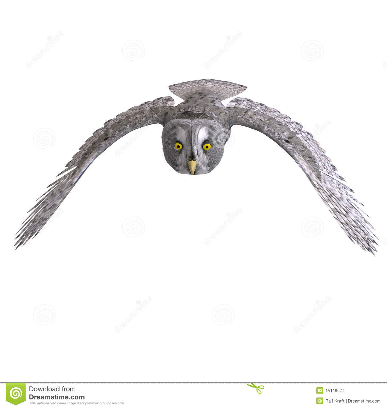 Grauer Eulen-Vogel