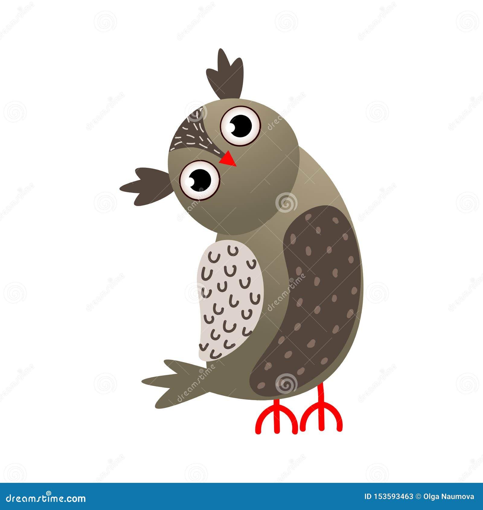 Graufarbeulenvogel mit dem roten Schnabelschauen