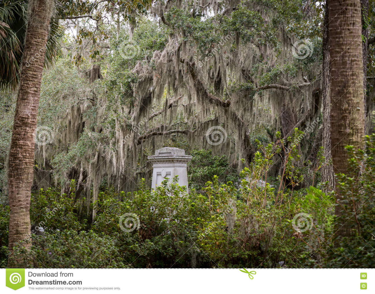 Grave Stone and Spanish Moss