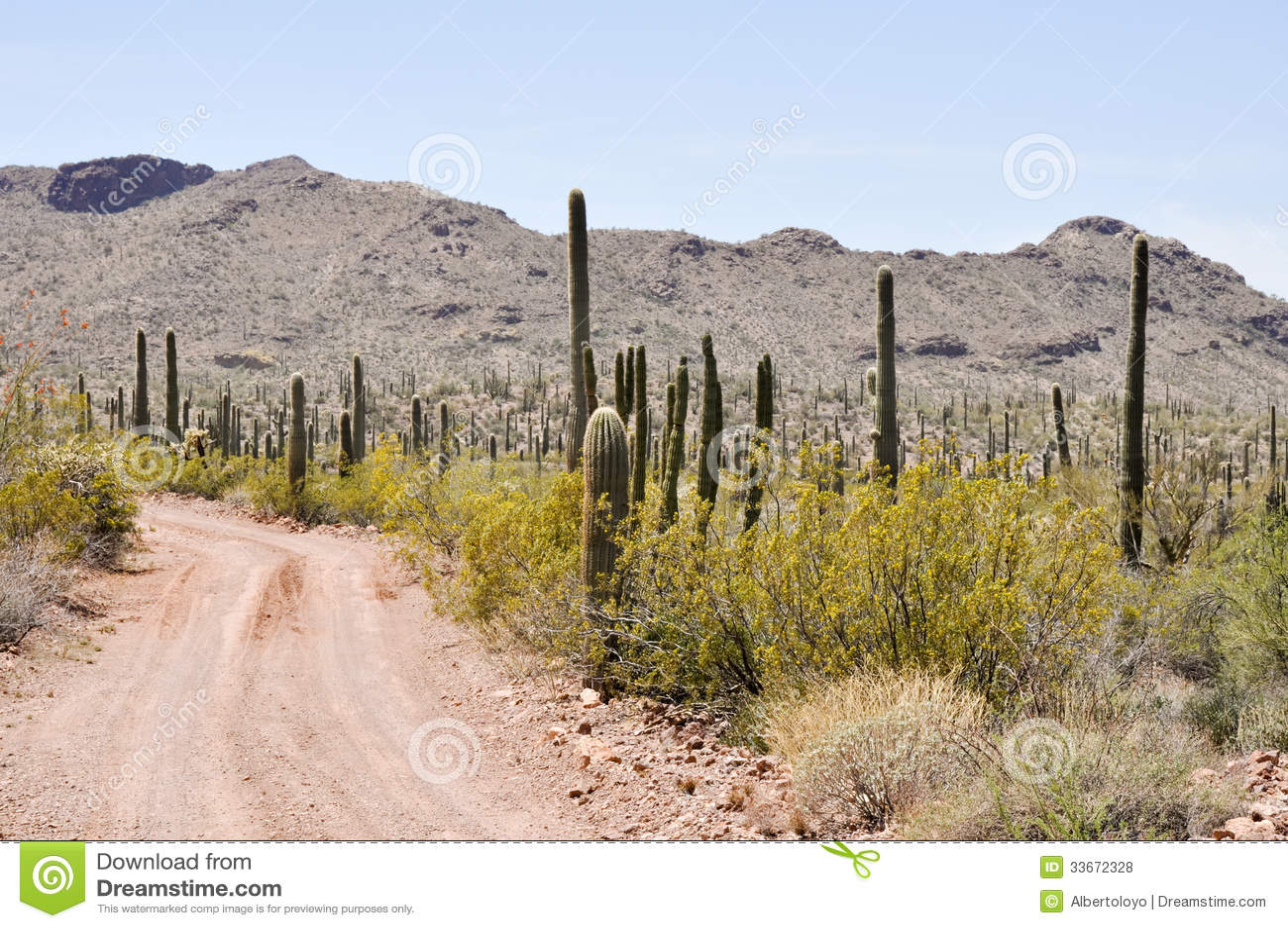 Gravel дорога, национальный парк кактуса трубы органа, Аризона