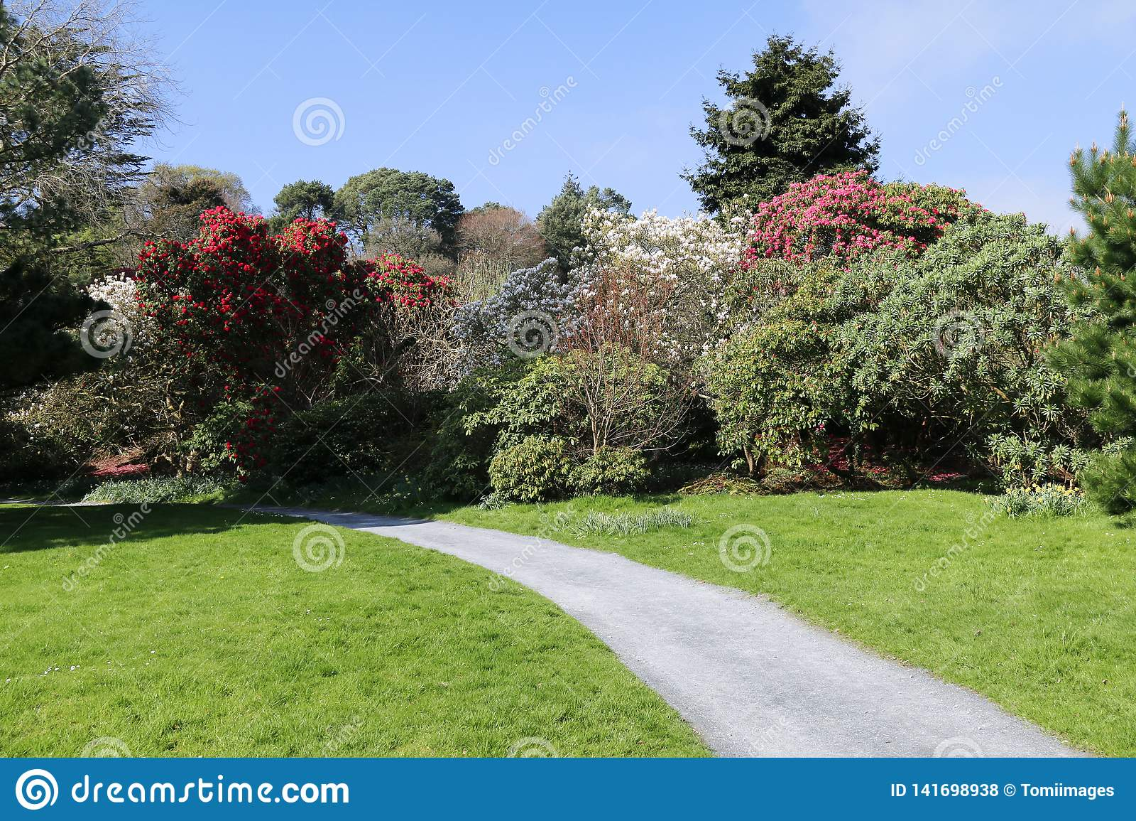 A Gravel Garden Path Leading Through Grass Stock Photo Image Of