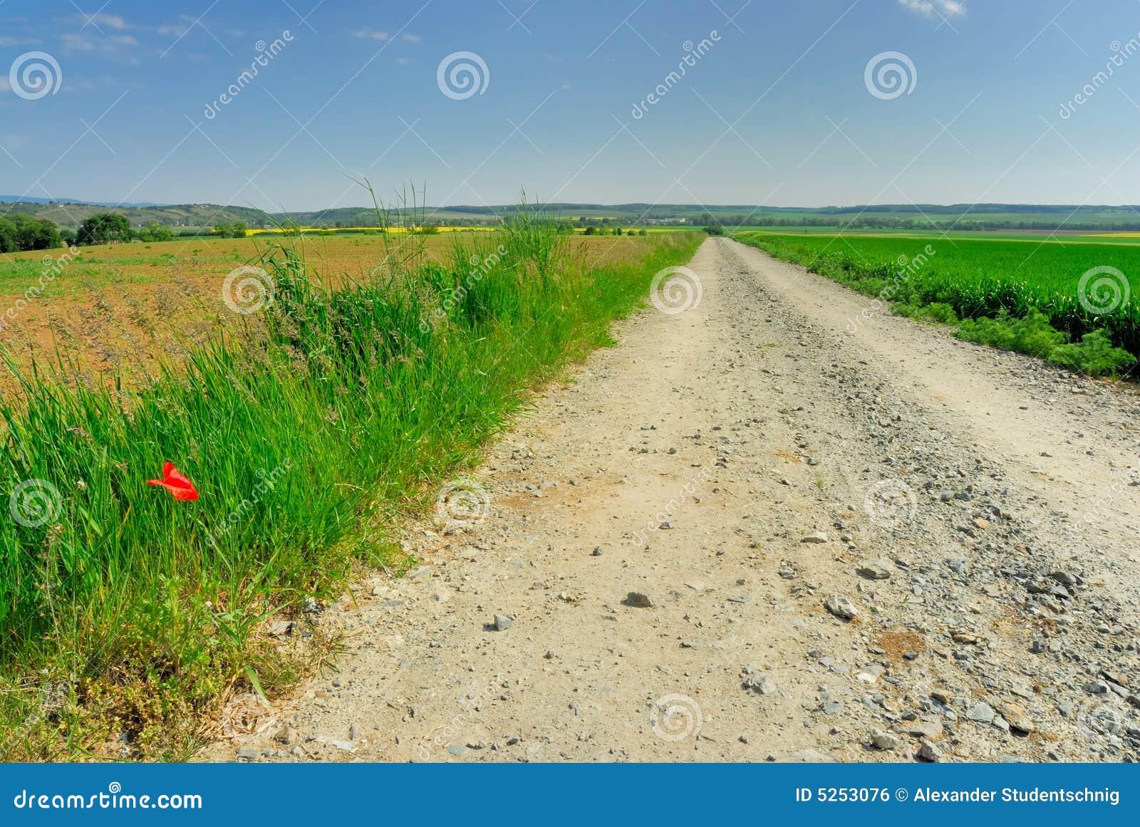 Gravel road no.2