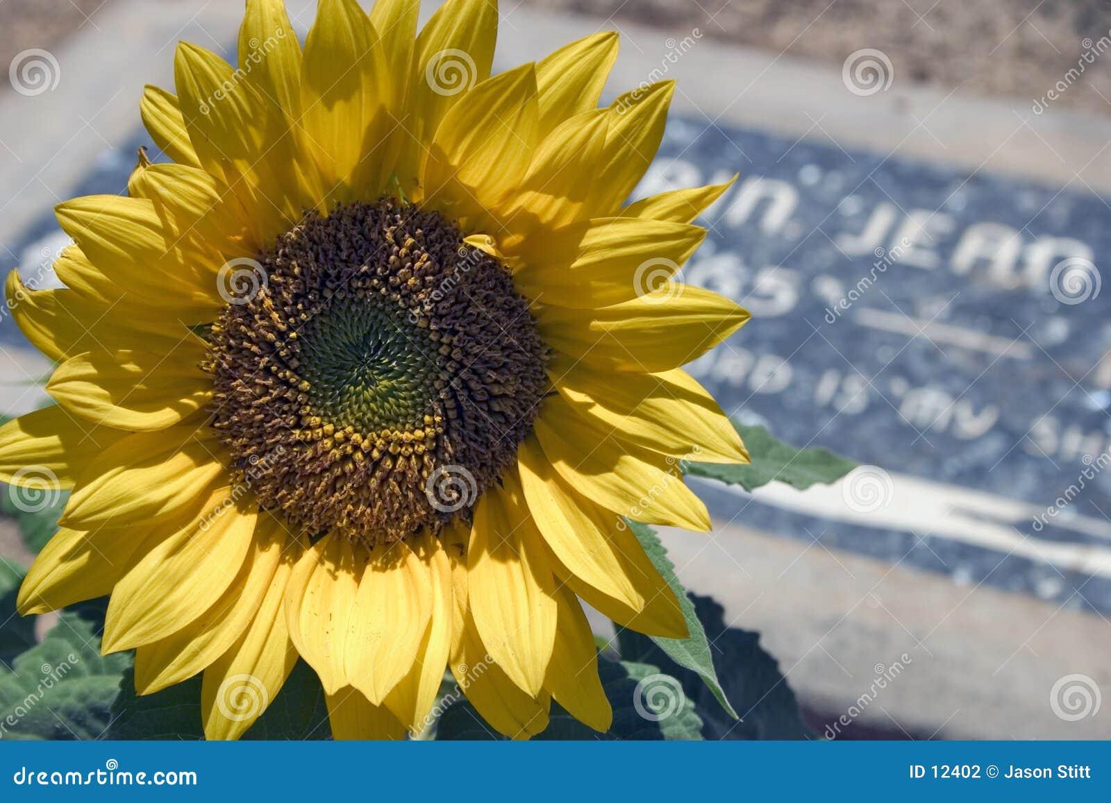 Graveside Flower