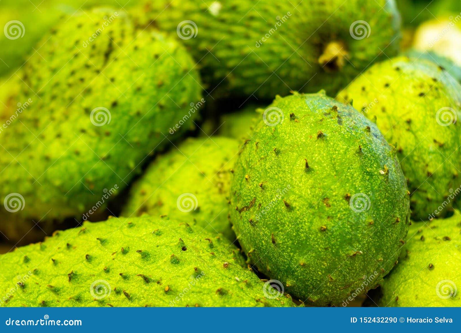 Graviola sur le marché Fruit blanc très doux de pulpe Fruit tropical exotique du Brésil