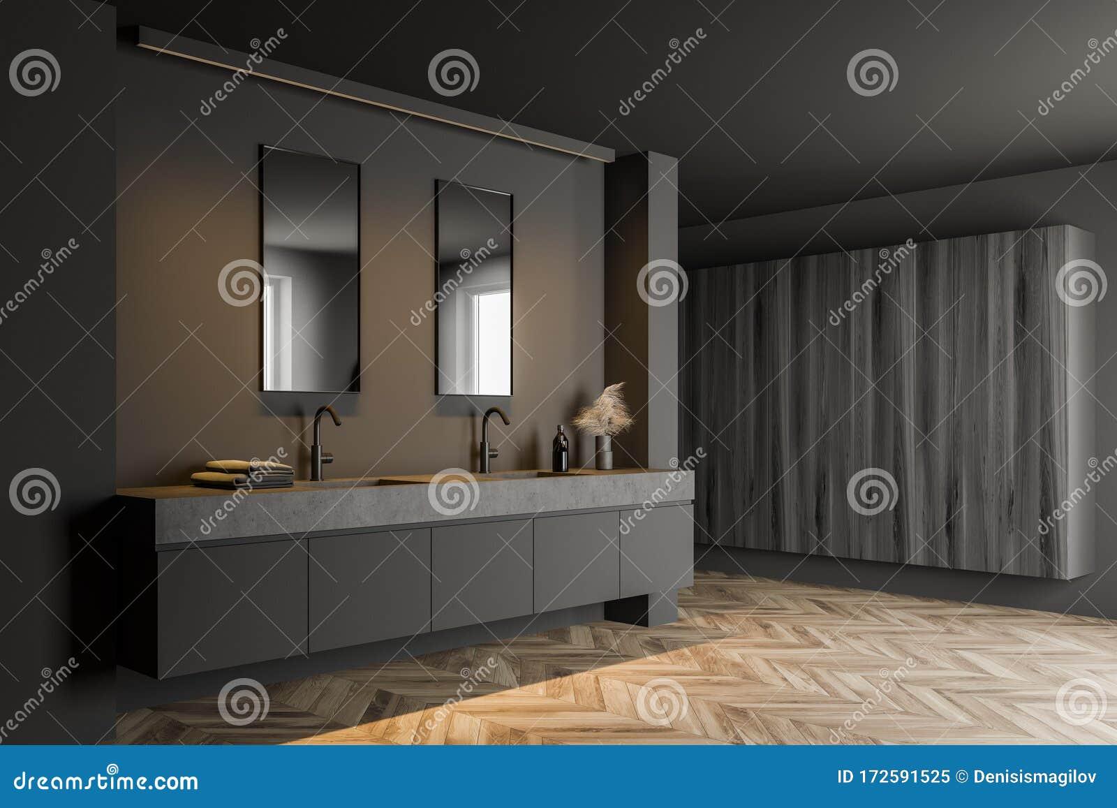 Gray Bathroom Corner With Double Sink Stock Illustration Illustration Of Modern Indoor 172591525