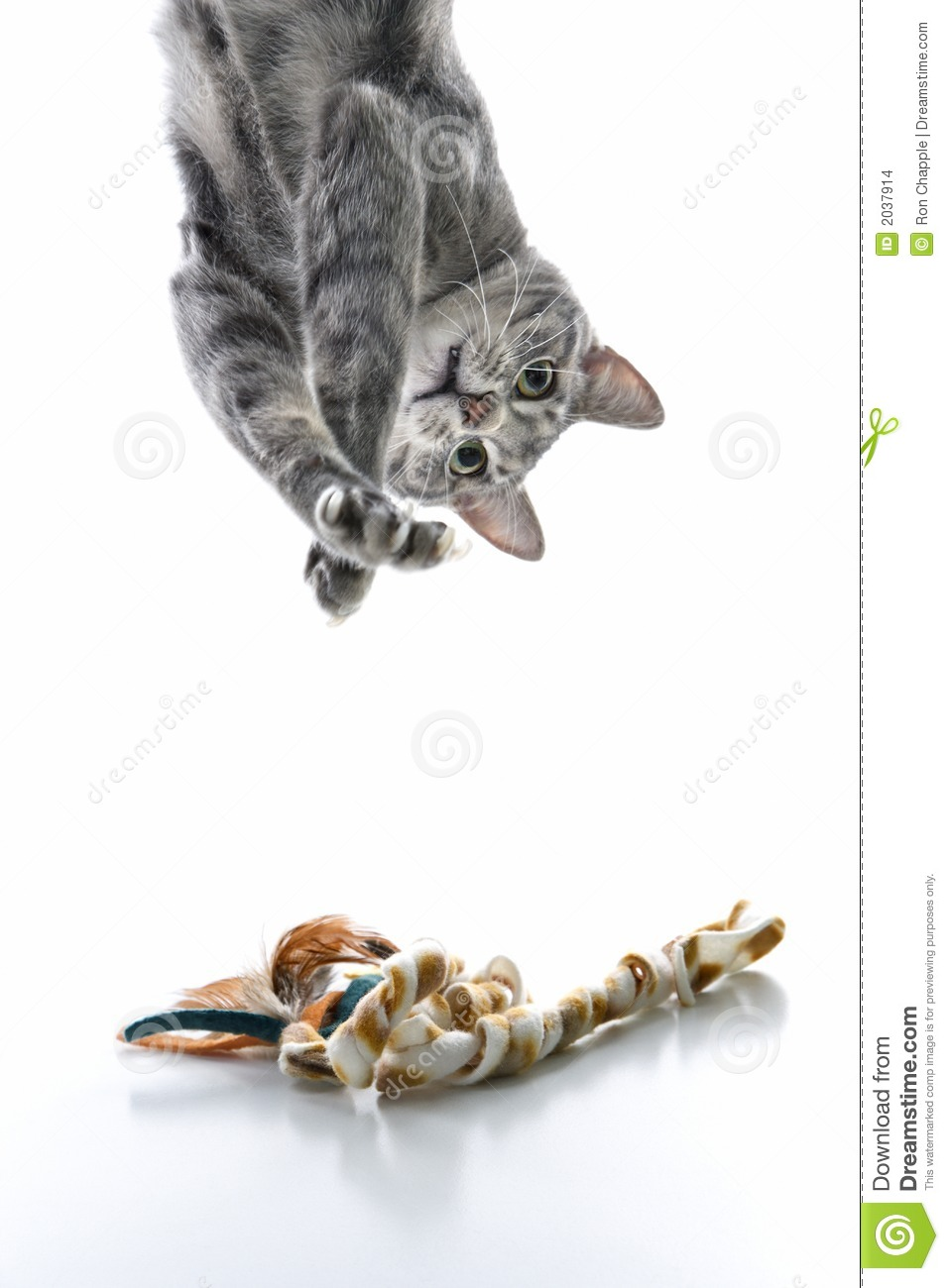 Brown Striped Cat Toy