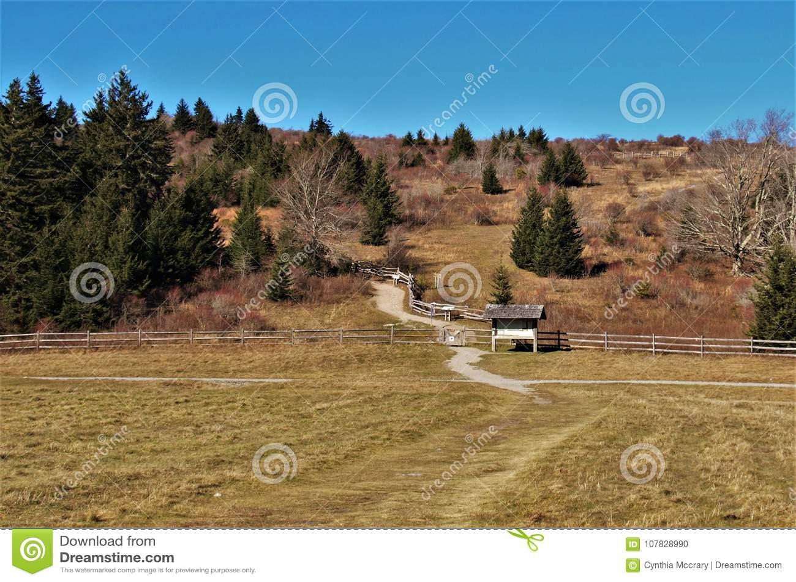 Grayson Highlands Massie Gap Trailhead
