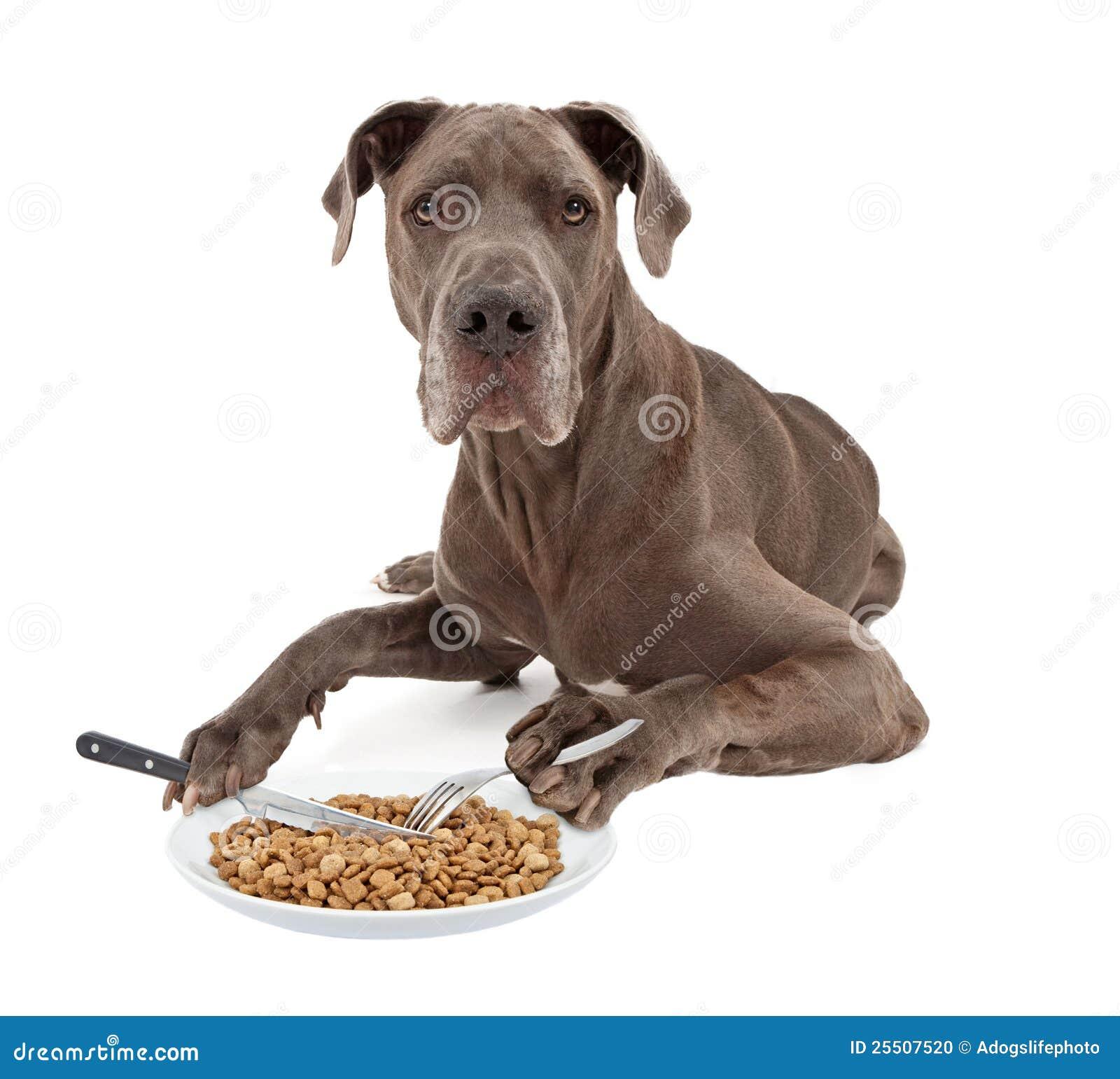 Raw Dog Food For Great Dane