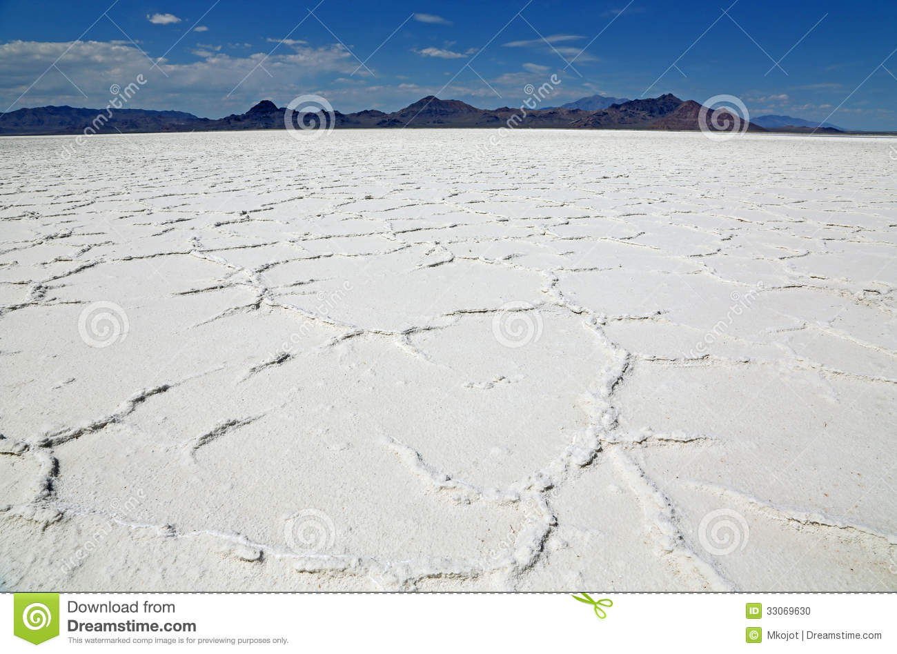Great Salt Lake Desert From Frog S Perspective Stock Photo Image