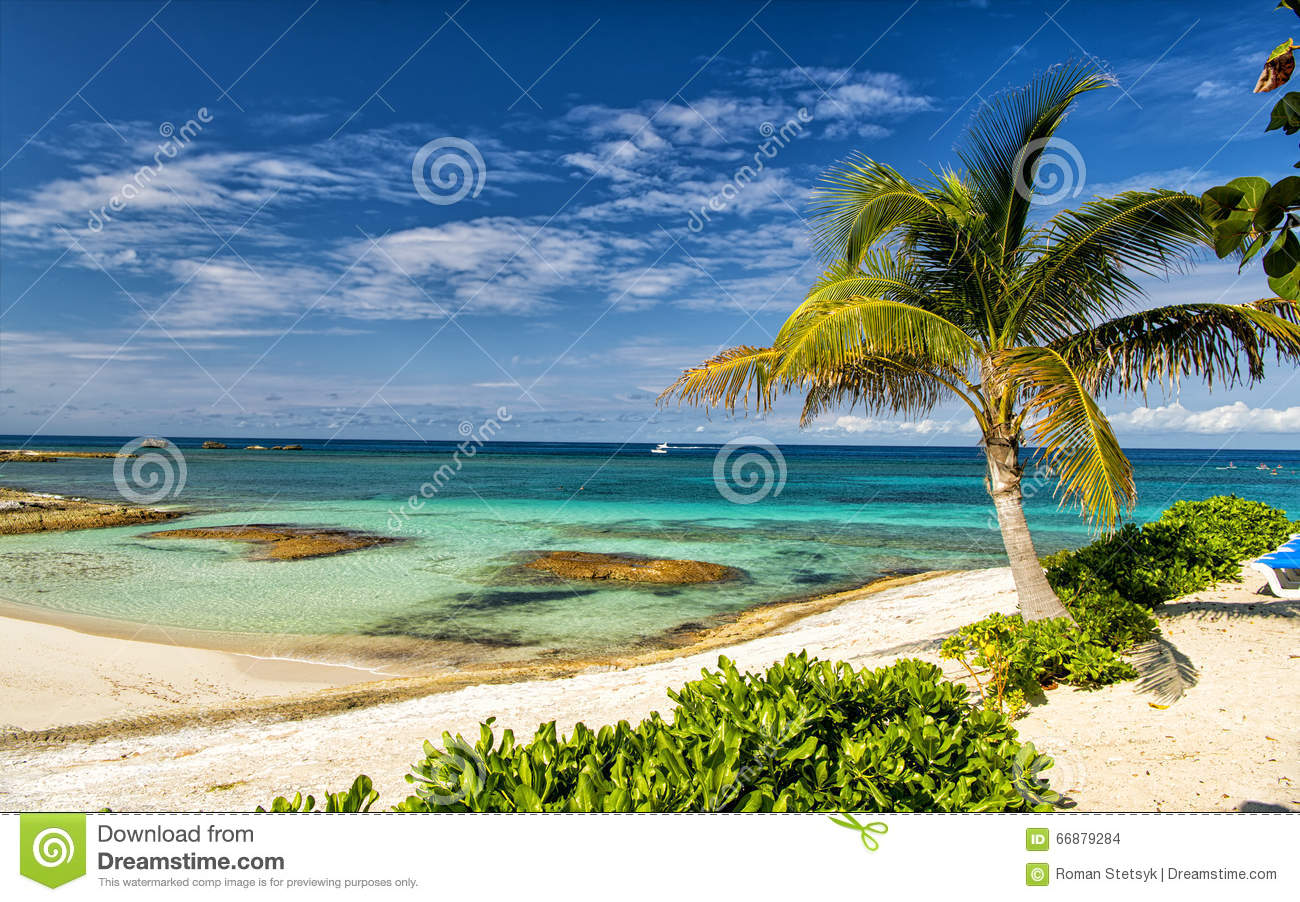 And sandy coast in sunny summer weather in great stirrup cay bahamas