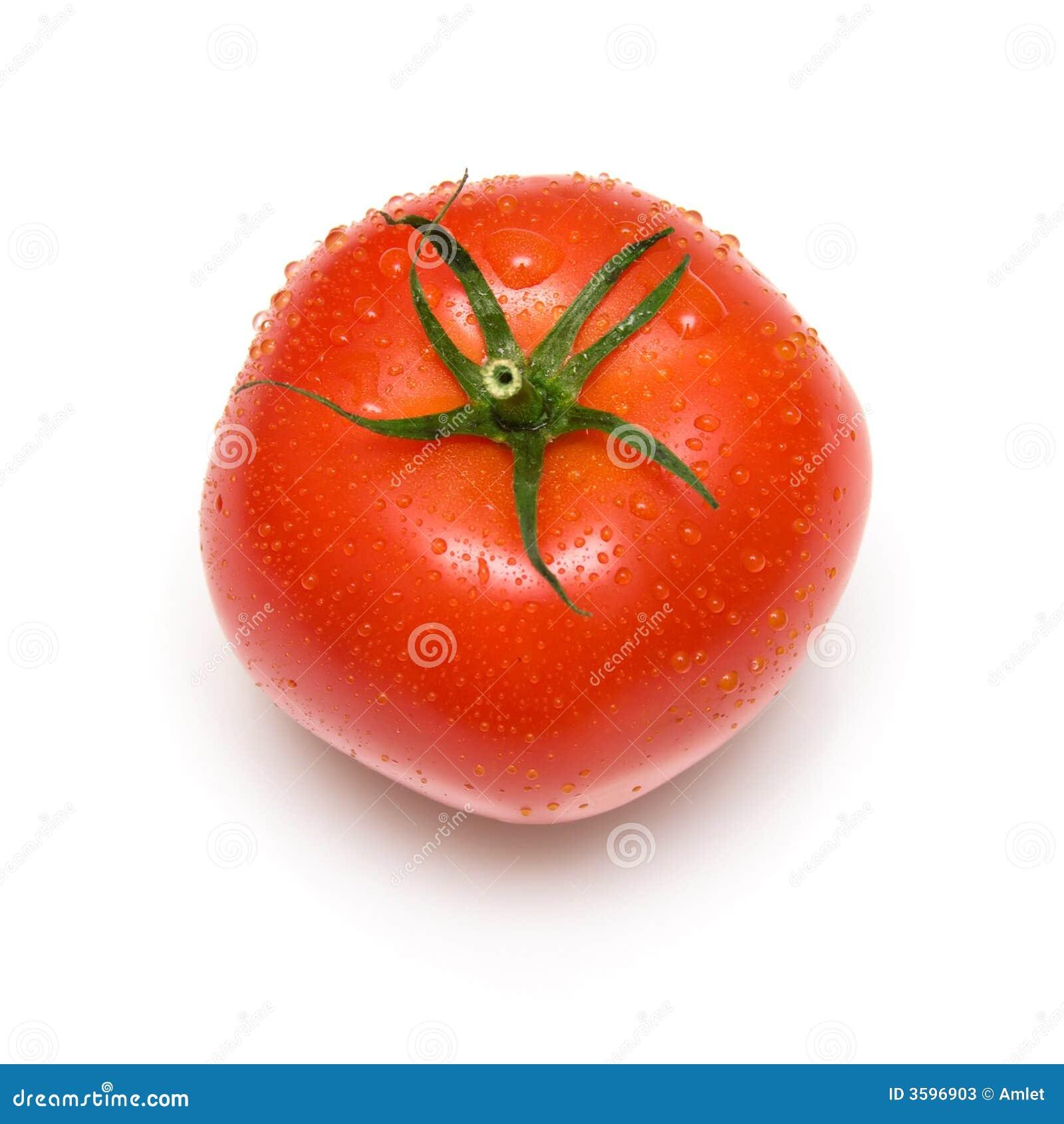 Great tomato