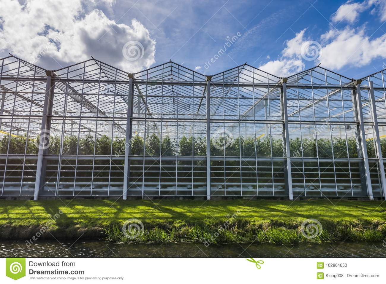 Tomato Greenhouse Harmelen with Clouds
