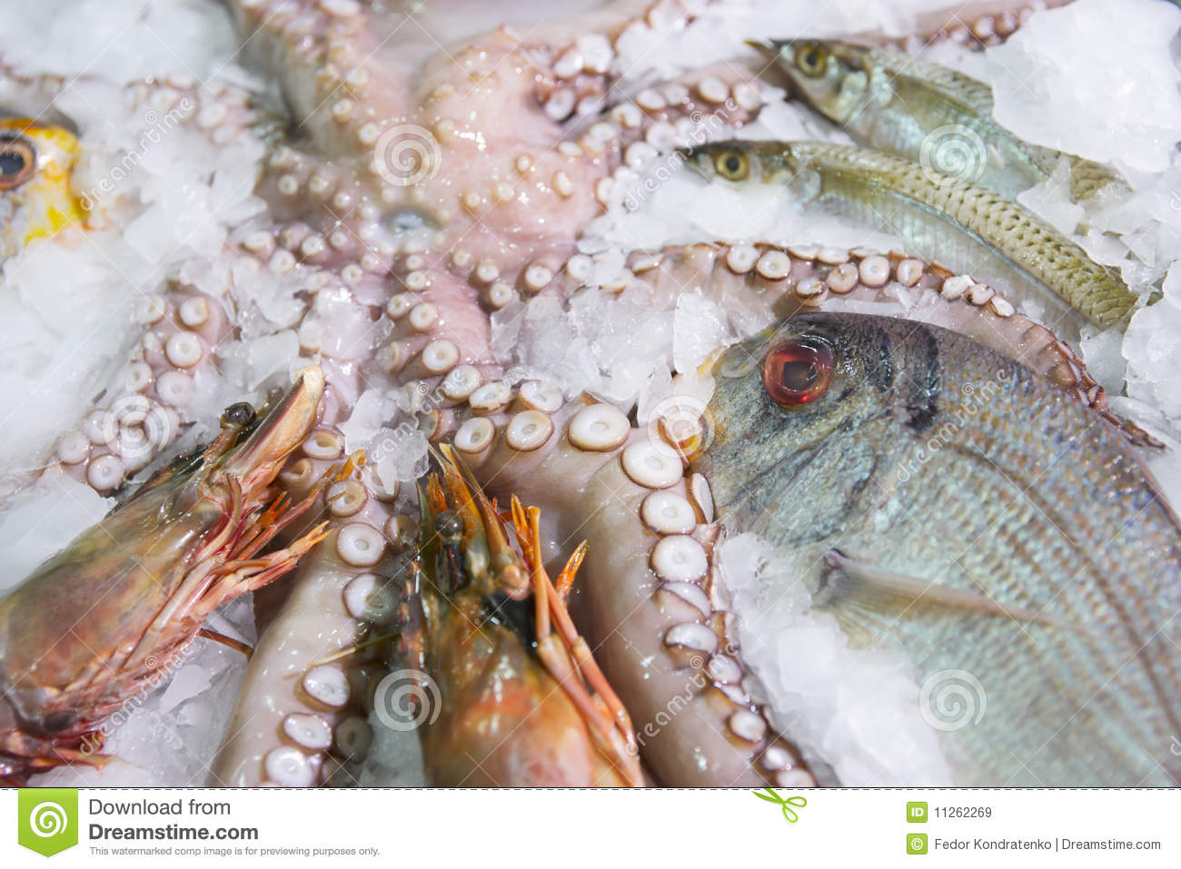 Great variety of fish and seafood stock image image for Fish and seafood