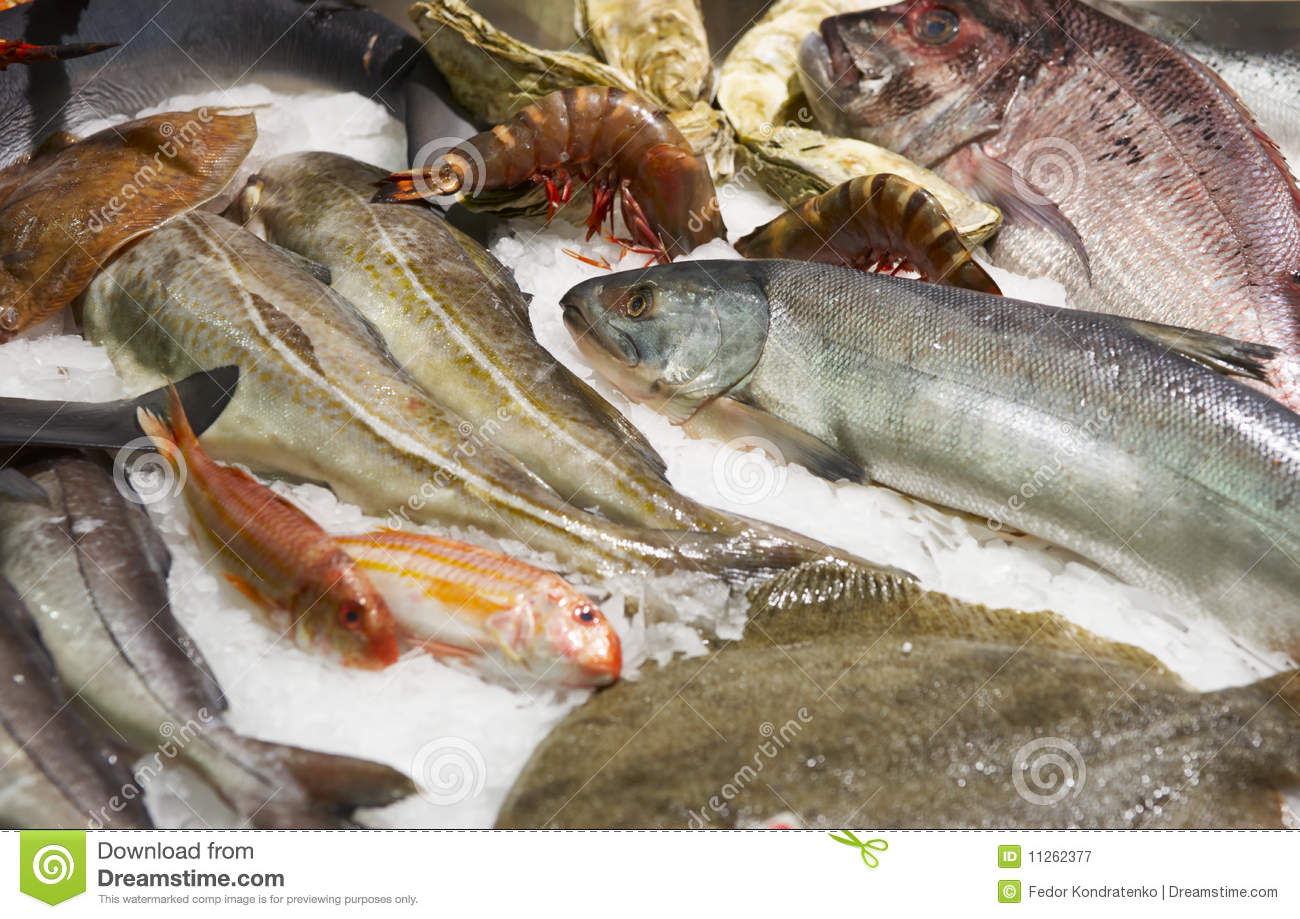 Great Variety Of Fish And Seafood Royalty Free Stock