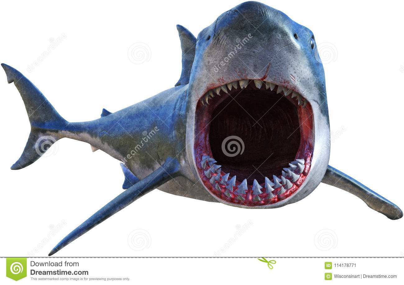 Great White Shark Attack Isolated