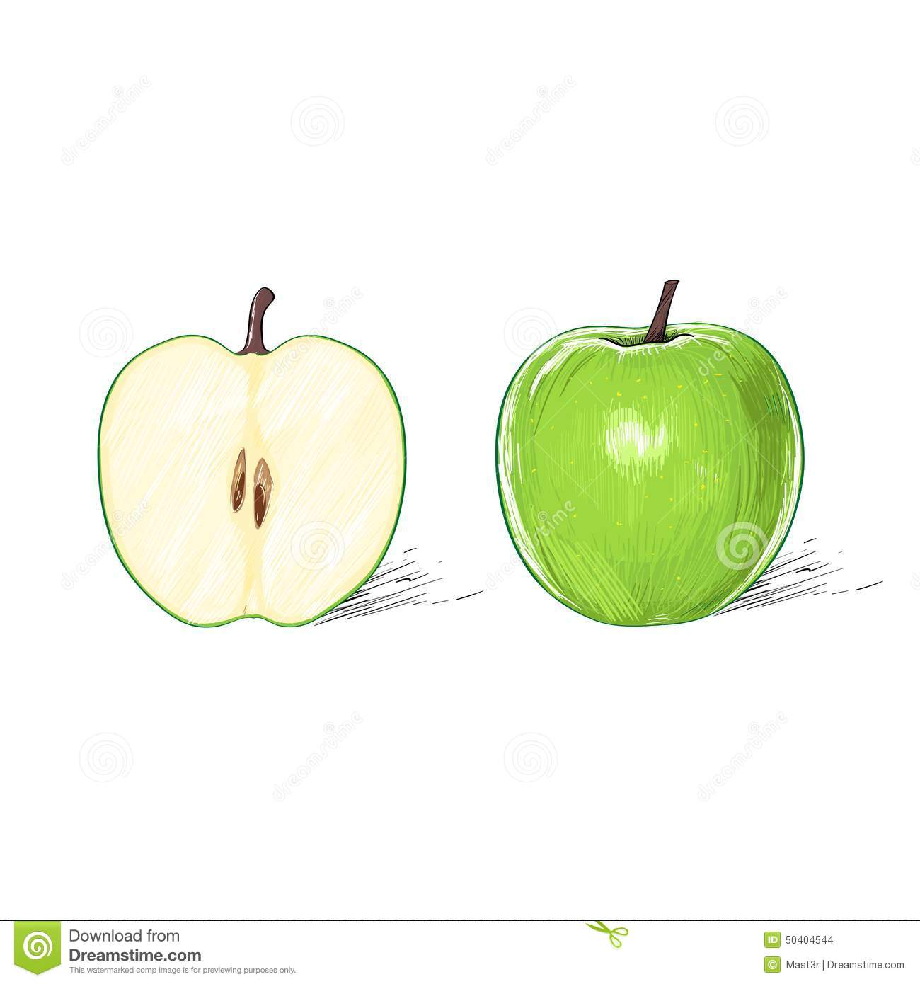 Green Apple With Cut Half Sketch Draw Isolated Stock Vector