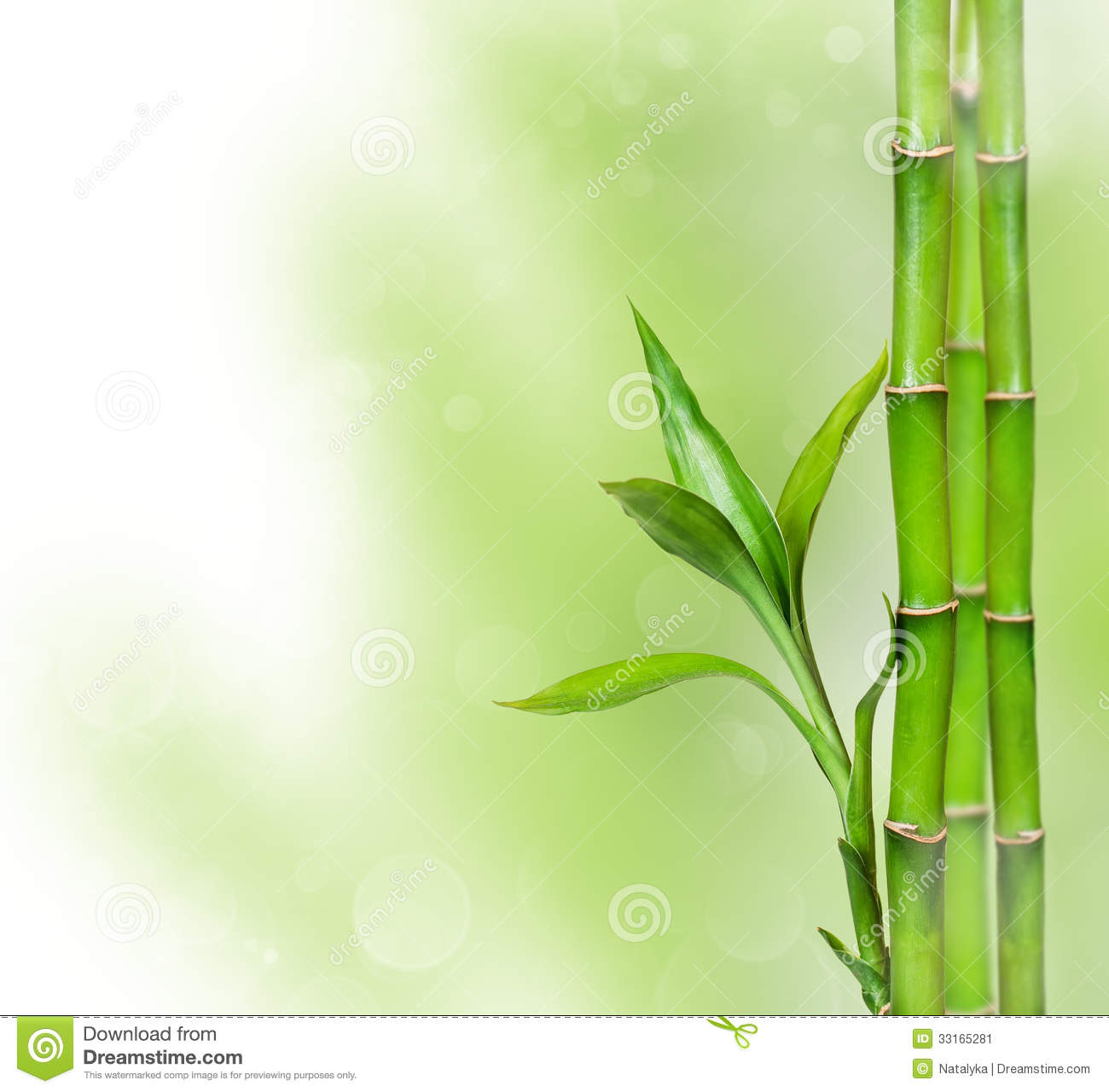 Green Background With Bamboo Stock Image - Image: 33165281