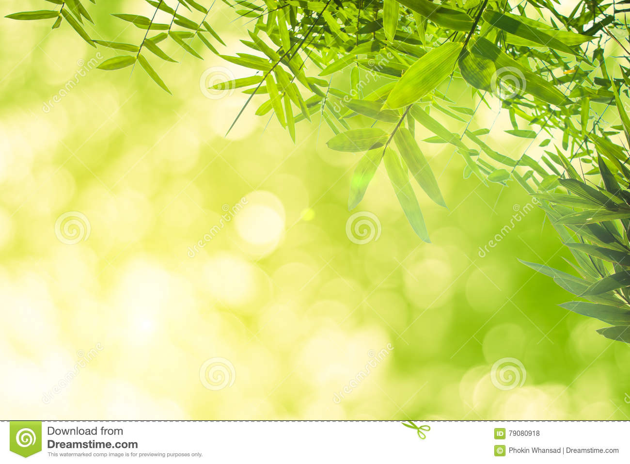 Green Bamboo Leaves Or With Background Green Energy Stock Photo