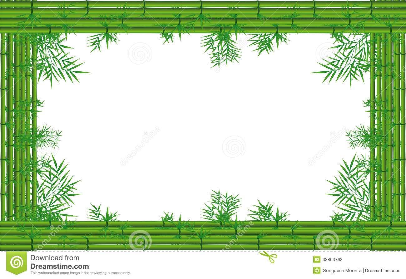 Green bamboo stock image. Illustration of floral, borders - 38803763