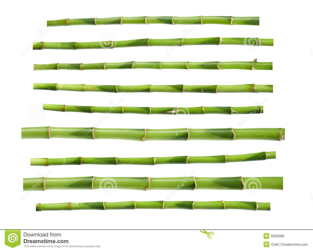 Green bamboo sticks stock illustration of