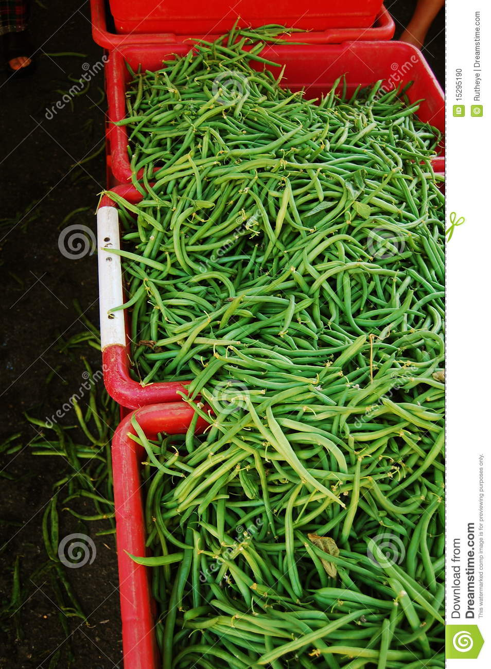 Green beans in red bins