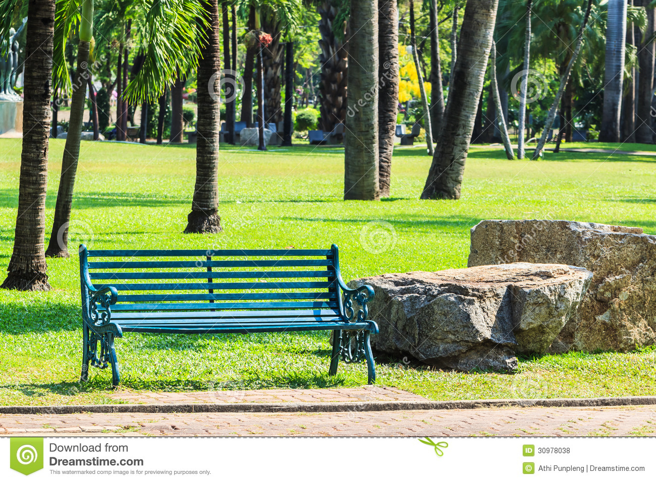 Green Bench In Palm Garden Background Stock Photo Image