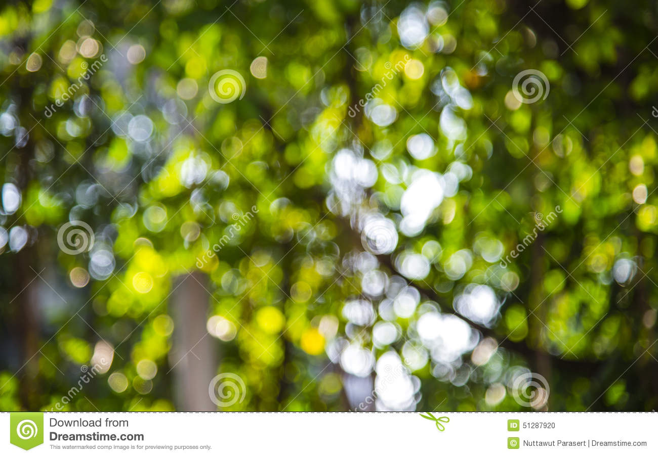 blurred outdoor backgrounds. Perfect Outdoor Download Green Blur Background Stock Photo Image Of Sunlight  51287920 With Blurred Outdoor Backgrounds R