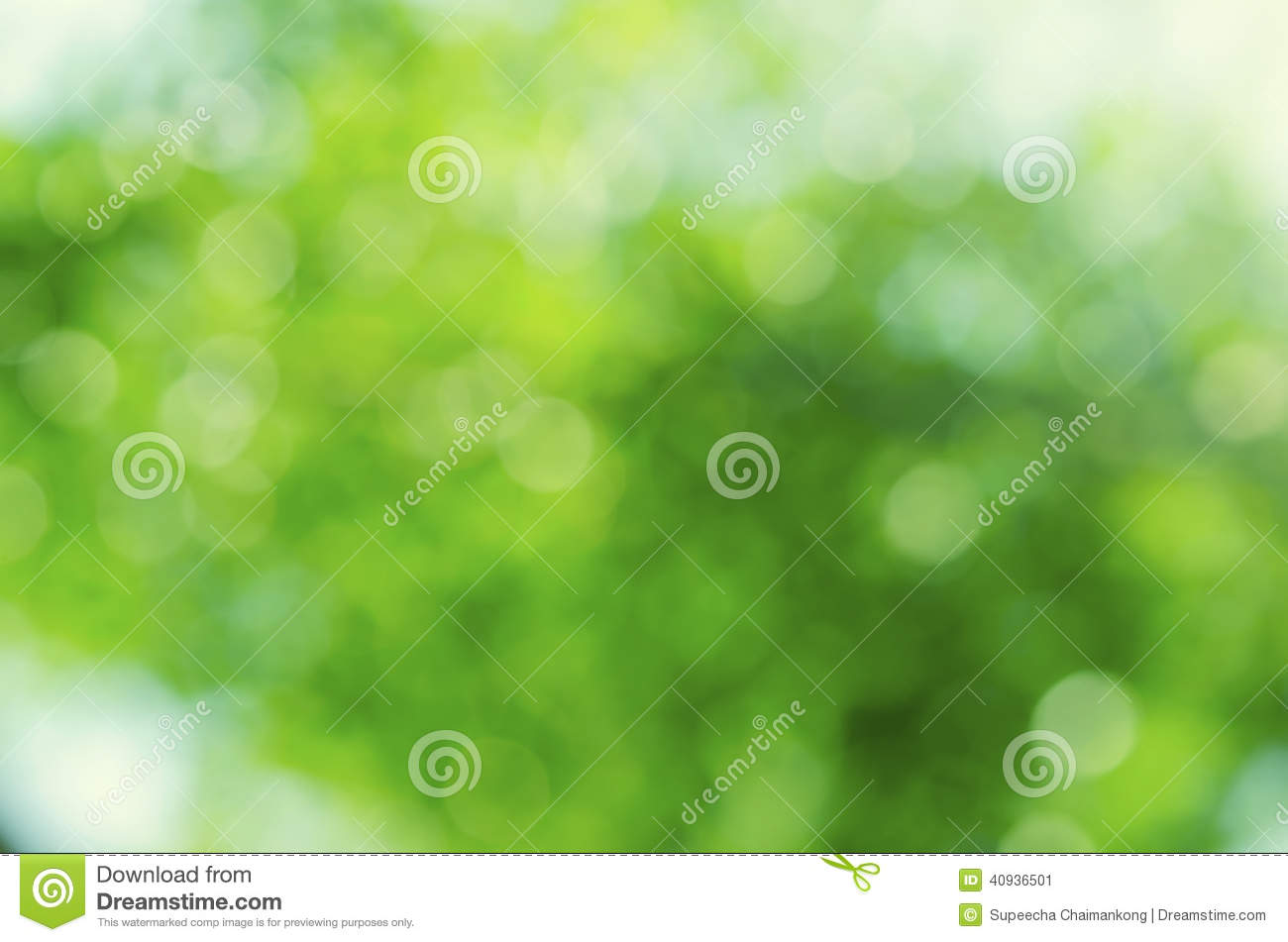 Green bokeh abstract backgrounds.