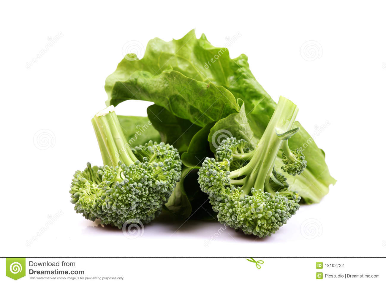 10 Powerful Advantages of Eating Lettuce