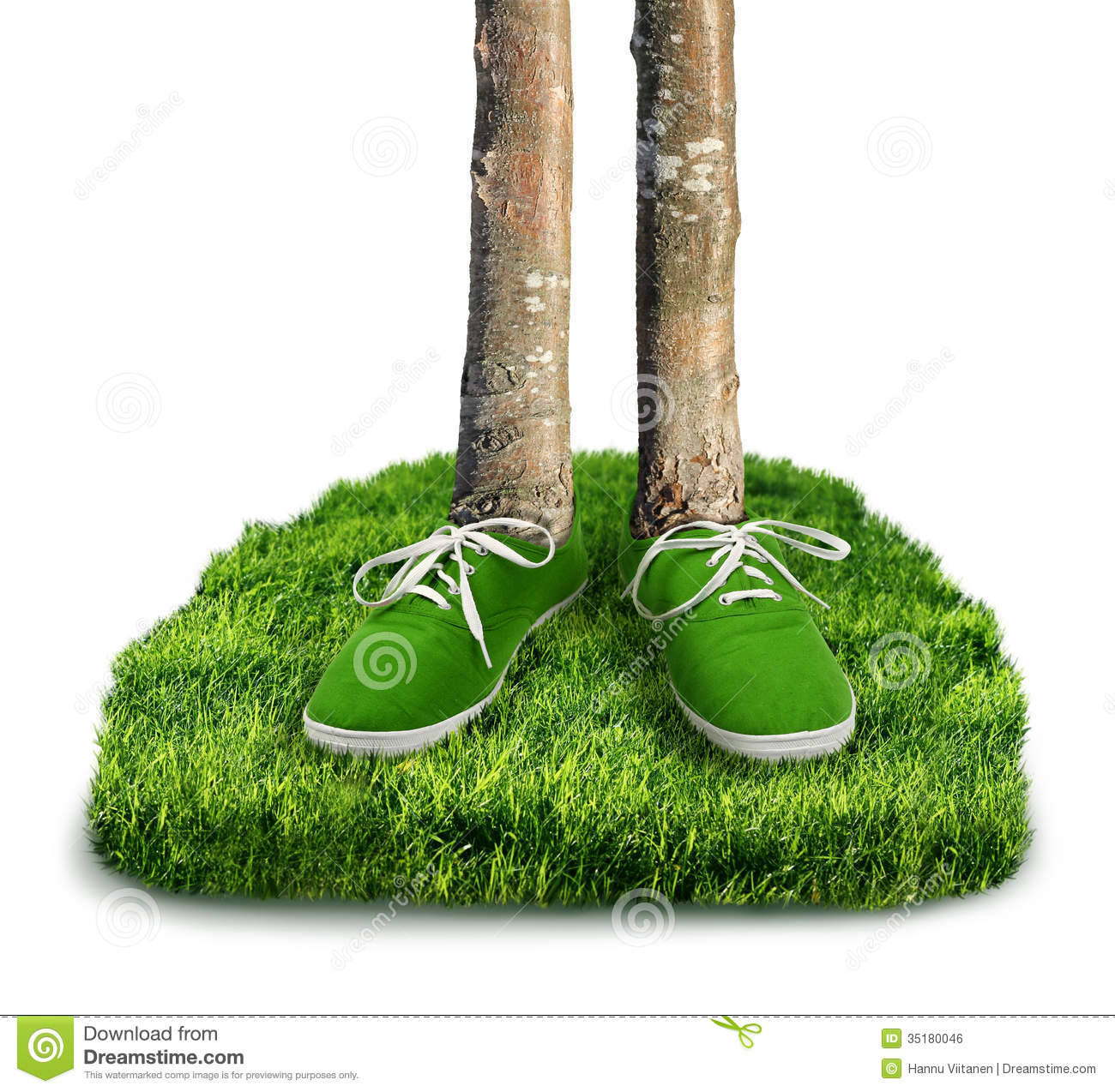 concepts of ecological footprints The ecological footprint is based on the concepts of capacity and the precautionary principle which though out without their critics (kooten and bulte, 2000), are commonly accepted in the field of ecological impact assessment (rees, 1996.