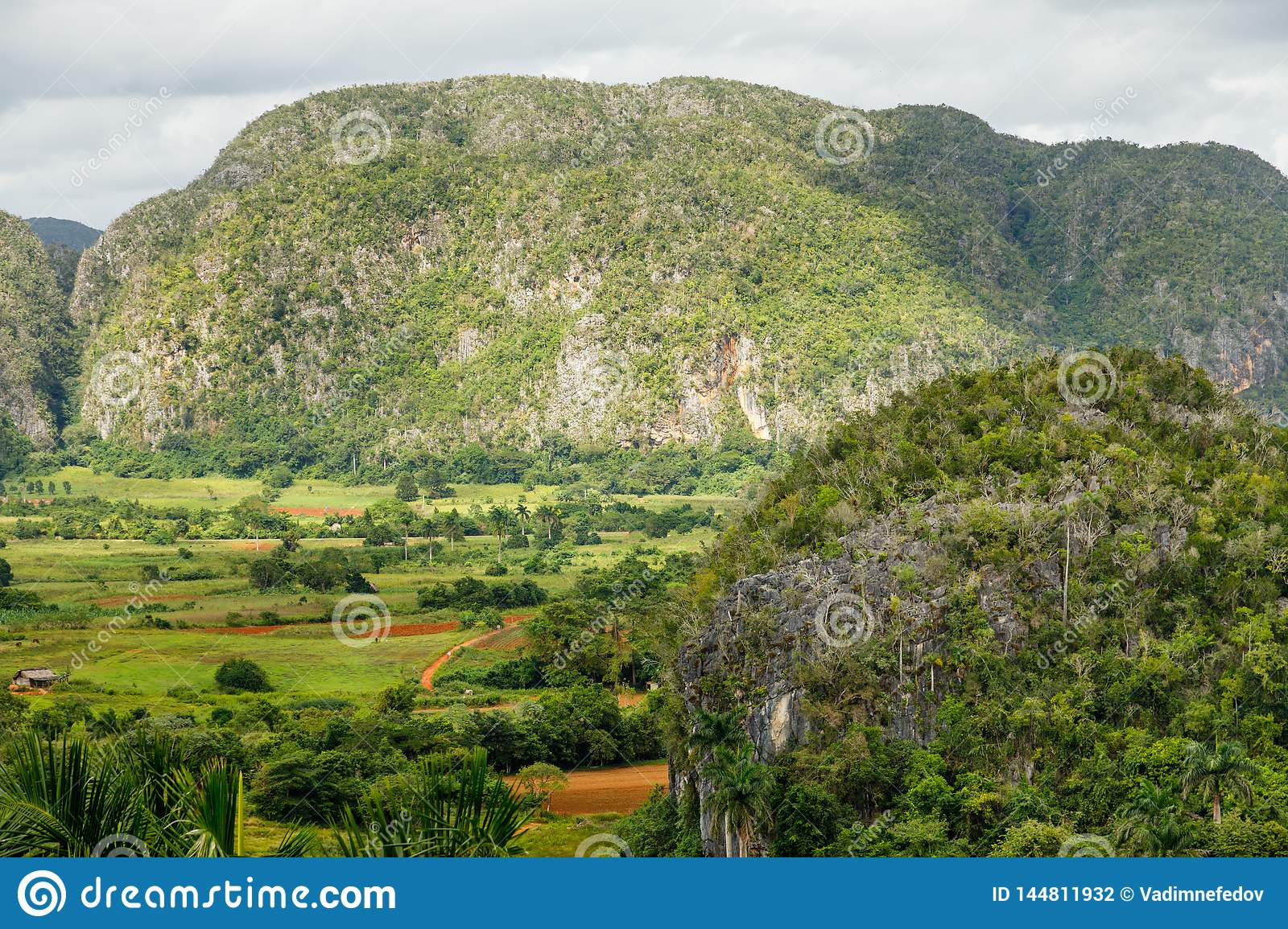 Green Caribbean Valley With Mogotes Hills Landscape ...