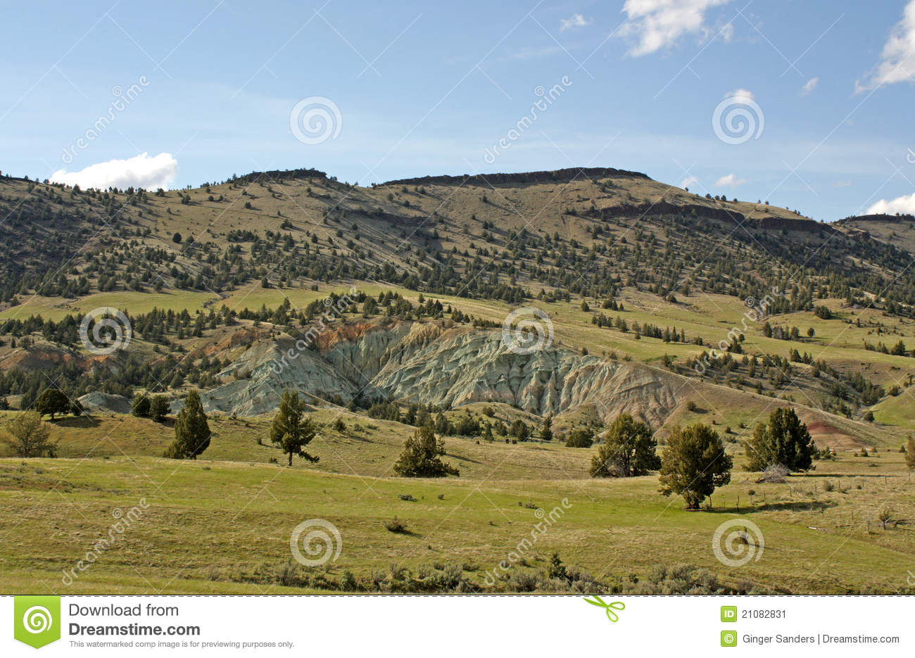 Green Clay Mountain And Pasture