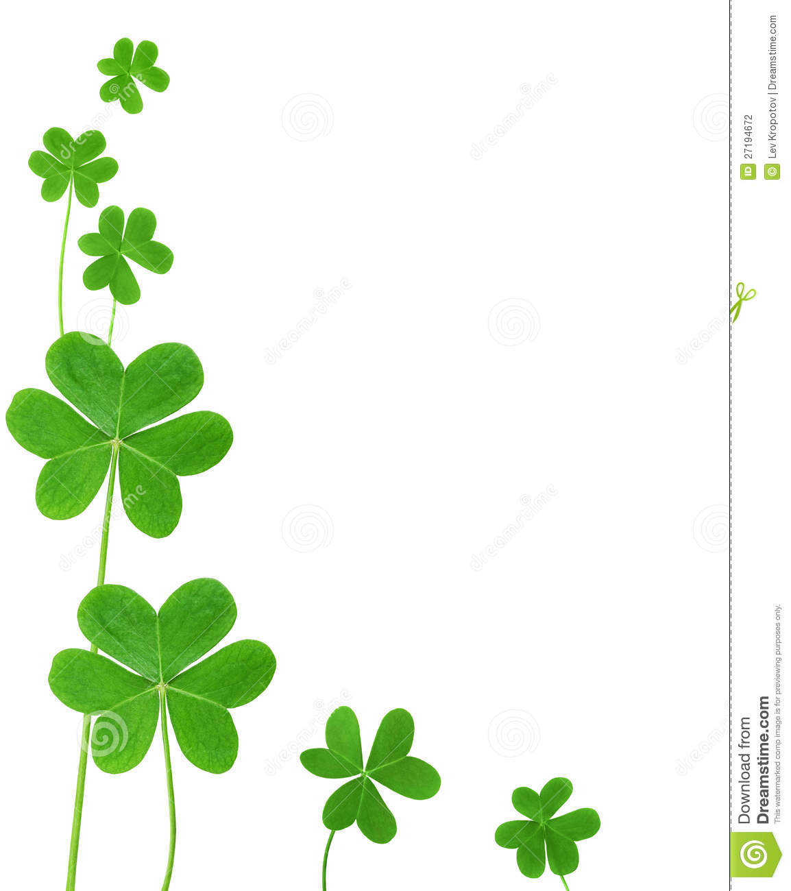St. Patrick's clover border isolated on white background.
