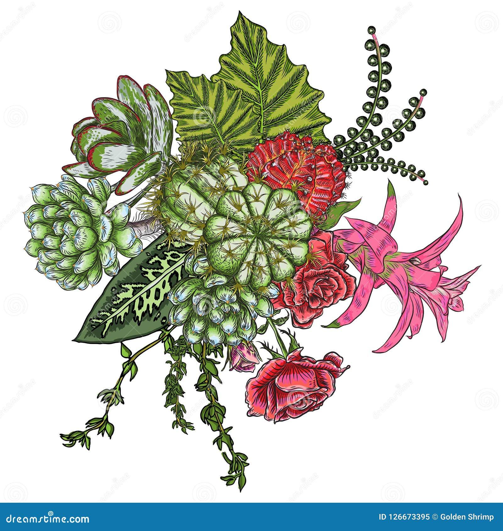 Green Colorful Succulent Bouquet Ikebana Tattoo Concept Selecti Stock Vector Illustration Of Garden Cactus 126673395