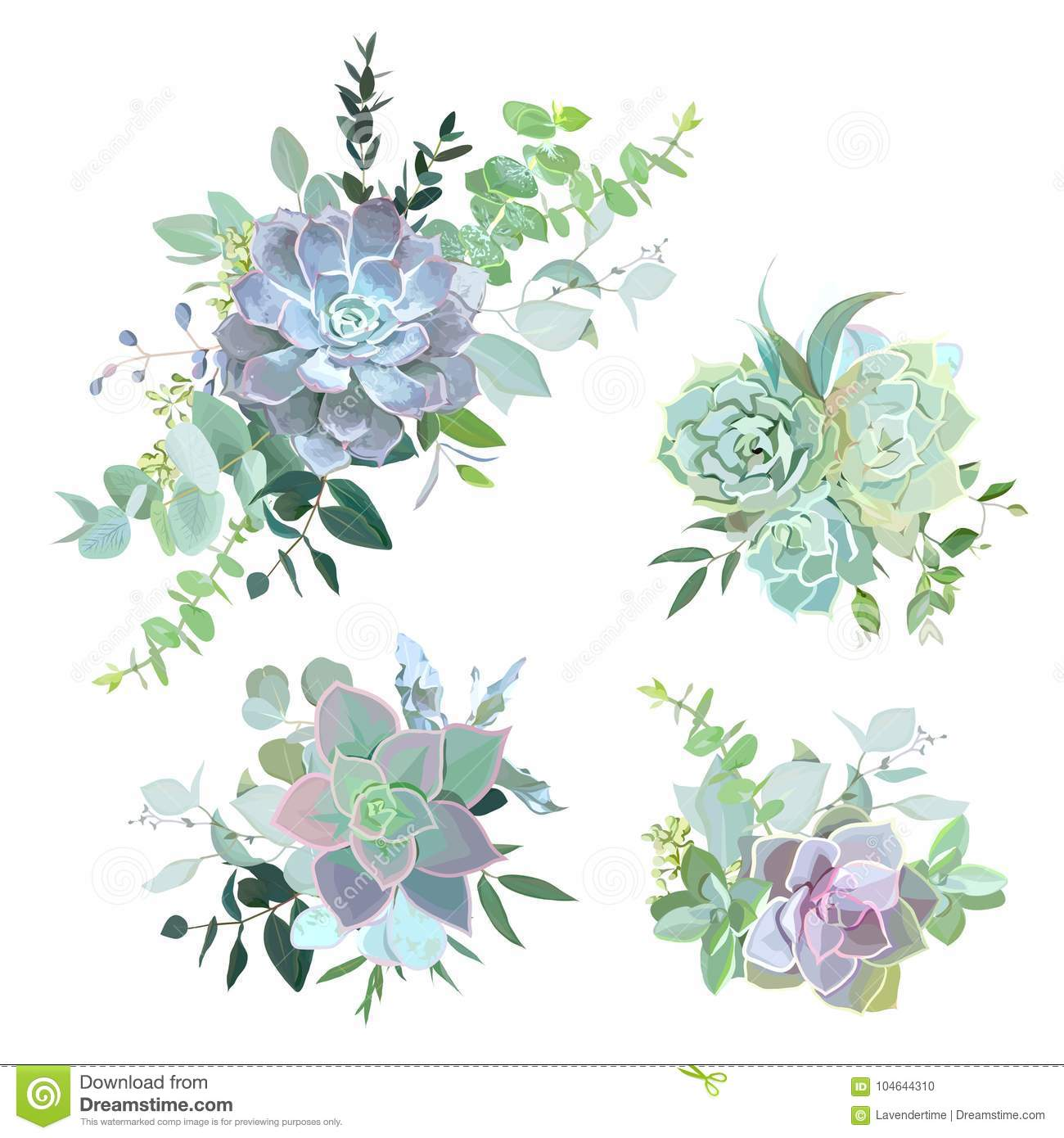 Green Colorful Succulent Bouquets Vector Design Objects Stock Vector Illustration Of Banner Drawing 104644310