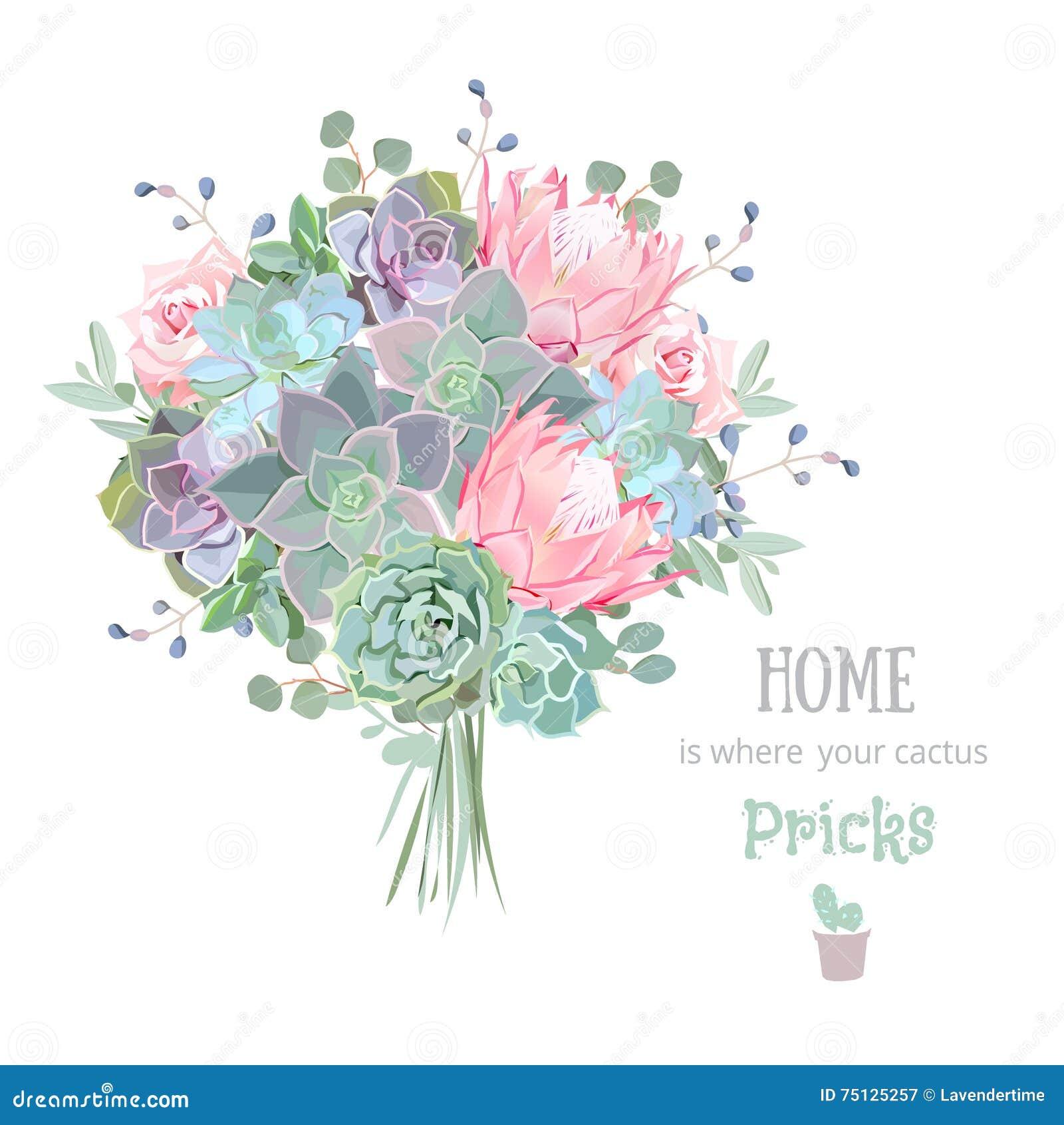 Green Colorful Succulents Vector Design Set Echeveria Protea Eucaliptus Stock Vector Illustration Of Funky Flowers 75125257