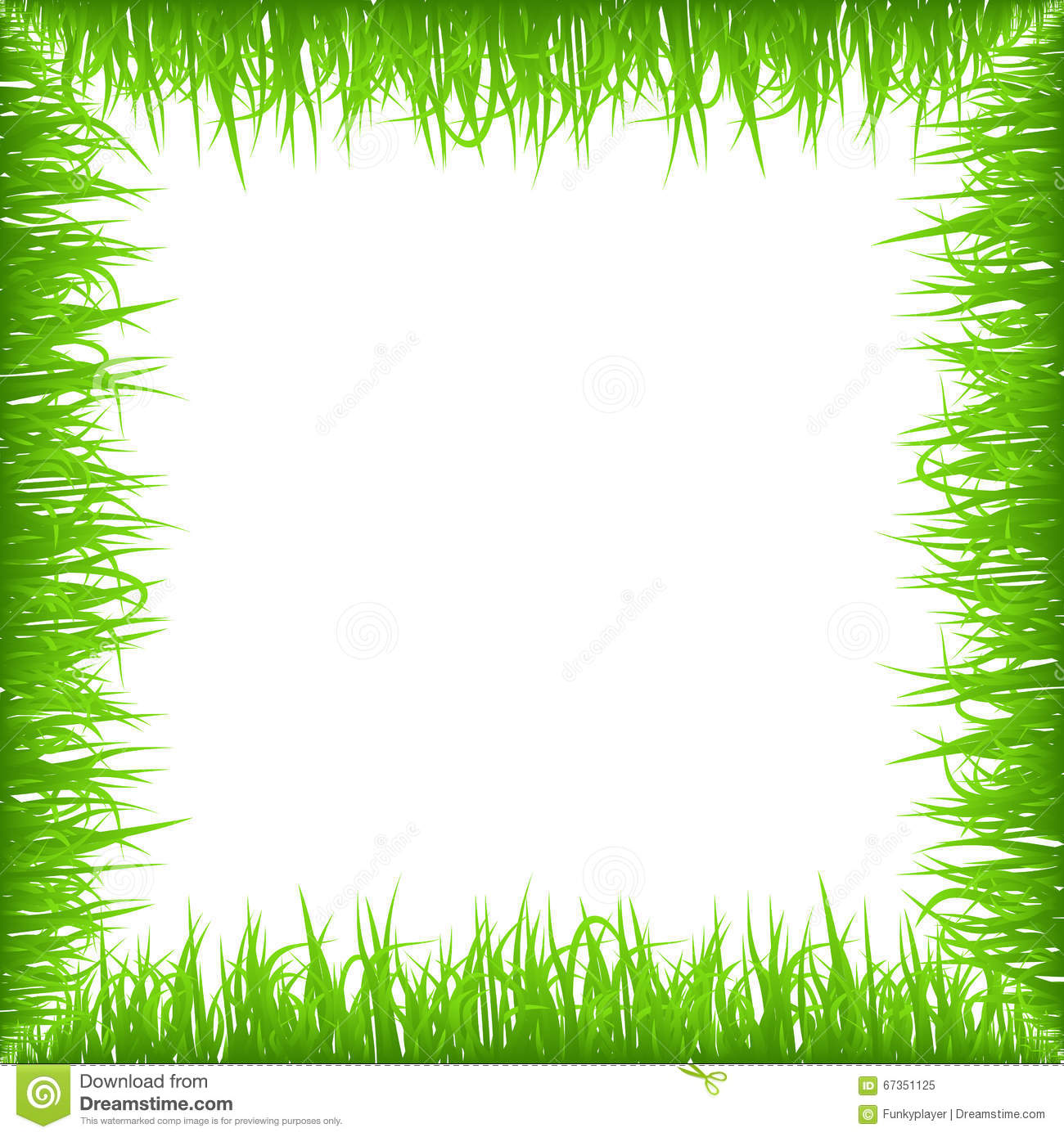 Green early spring grass frame isolated on white for Best grasses for borders