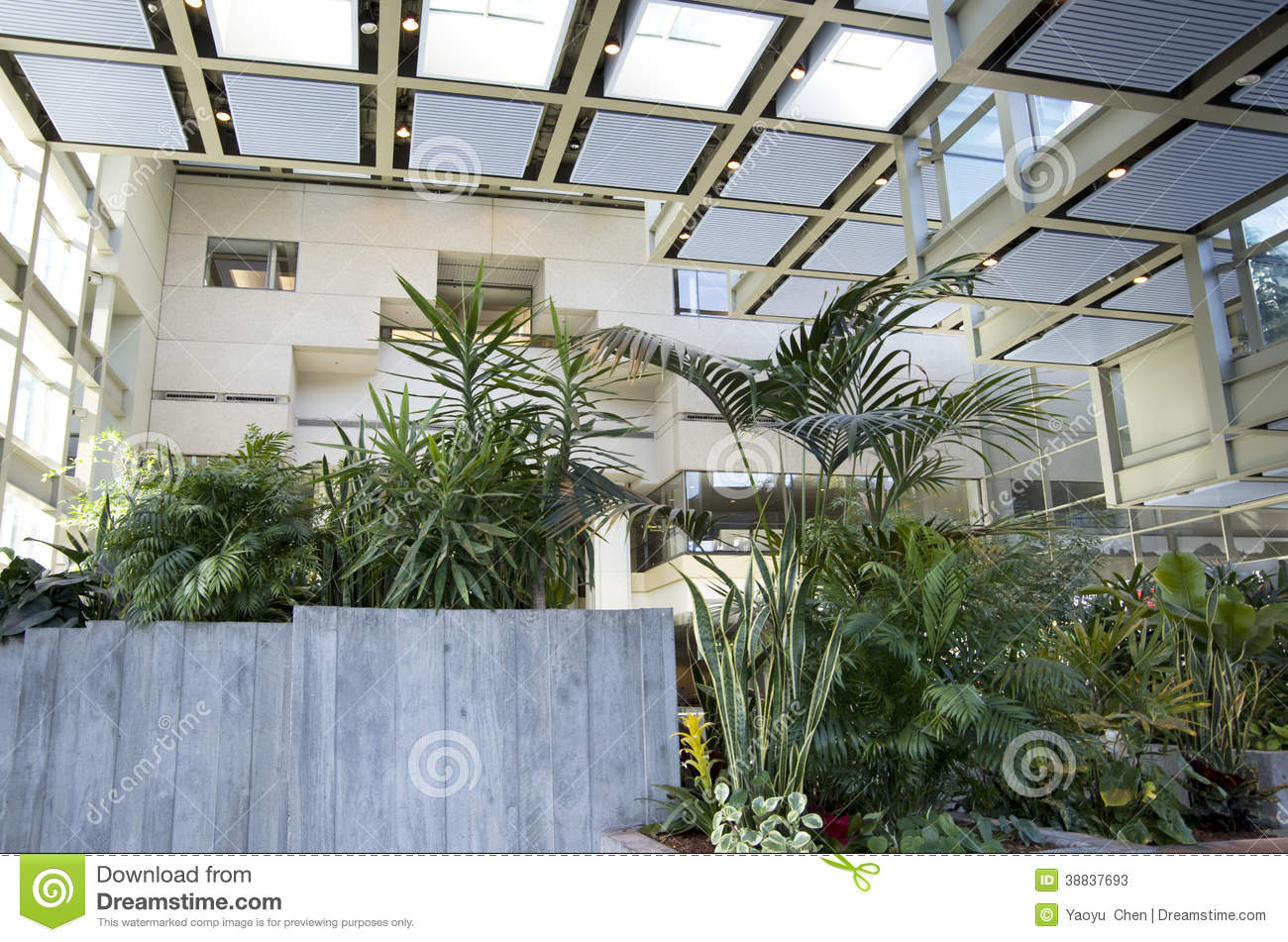 Green Eco Office Building Interiors Natural Light Stock